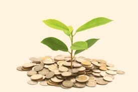 A little tree growing out of a pile of coins, representing The Money Tree Plan, Assunta Iannilli's accounting service package for small BC businesses